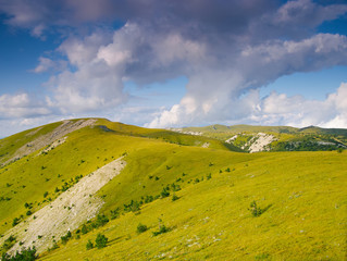 Летние холмы