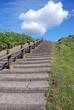 開陽台の階段
