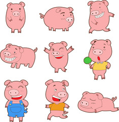 Nine cute cartoon pigs