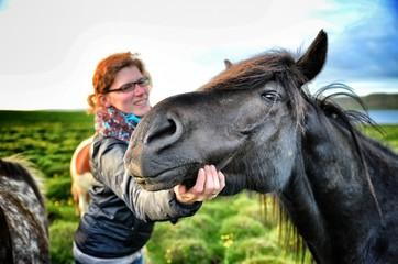 Glückliches island pferd