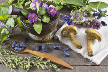 Still life with healing herbs, berries and mushrooms