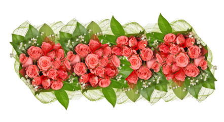 band of pink rose flowers isolated on white