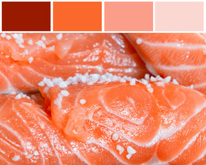Salmon filet background  with complimentary swatches.