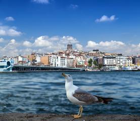 Golden Horn in Istanbul. Turkey