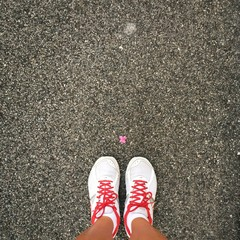sport white and red shoes and a pink flower