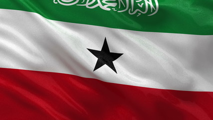 Flag of Somaliland waving in the wind - seamless loop