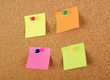 Empty pinned notes on corkboard isolated