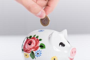 Sparschwein und Münze