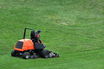 Homme tondant la pelouse