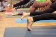 yoga class - 66861831
