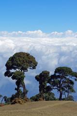 Vulkan Irazu Costa Rica