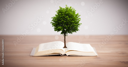 canvas print picture Tree growing from an open book