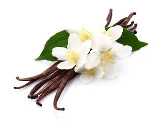 Vanilla with jasmine