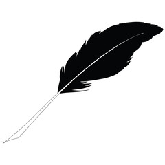 Black feather on white. Raster