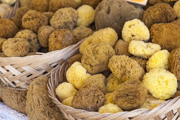Natural sponge in different shapes on boat stall in Greece