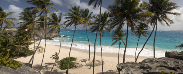 Beach at Barbados