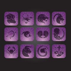 Zodiac Icons iPhone Style