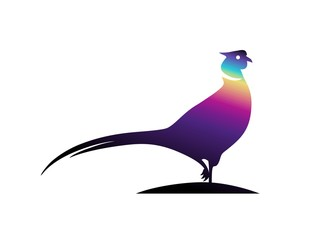 bird logo,pheasant,modern business symbol character silhouette