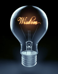 wisdom lightbulb