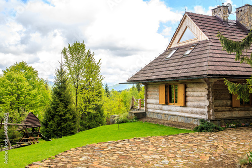 Beautiful log cabin in forest - 66878264