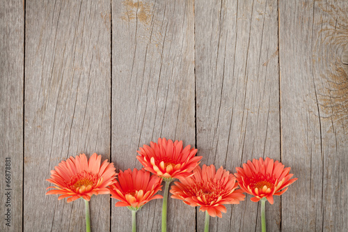 canvas print picture Wooden background with orange gerbera flowers