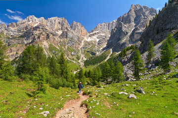 Dolomites - landscape in Contrin Valley