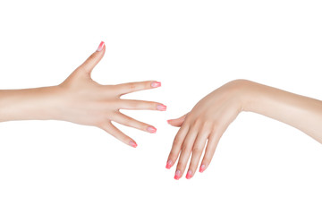 The right and left female hand.
