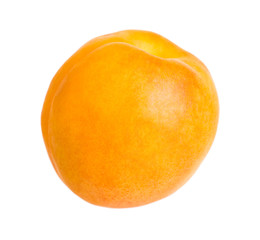 Apricot fruit isolated on the white