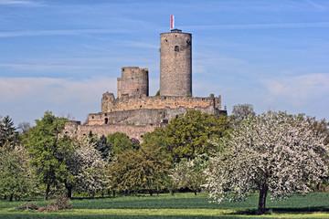 Burg Muenzenberg - Stauferburg - Bild 3