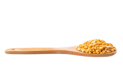 Dried Dal Lentil On Wooden Spoon