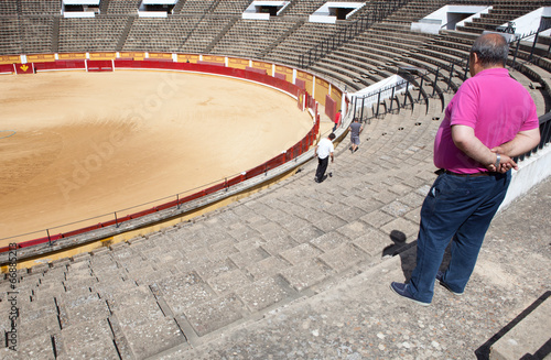 Papiers peints Taurin Bullfighting arena