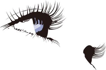 女性 瞳 まつげ