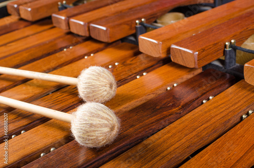 Mallets on marimba - 66888207