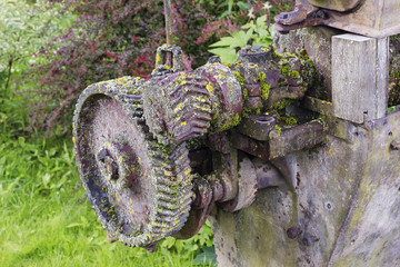 Mossy machinery