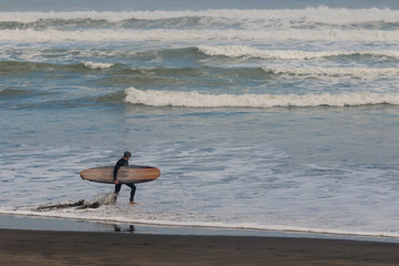 surfer walking on Muriwai beach