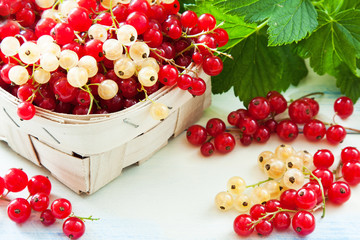 Ripe currants