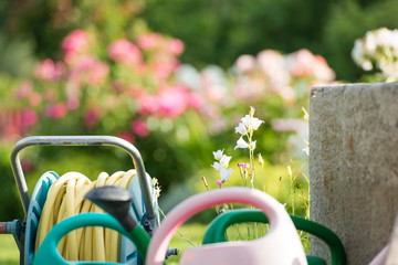 Flower garden with watering cans and hose