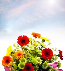 fresh flowers sky
