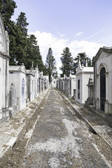 Old cemetery in the city of Lisbon