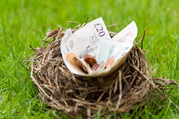 Nest filled with money not eggs