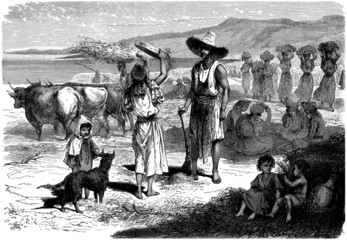 Harvest in Kabylia - Moisson en Pays Berbère - 19th century