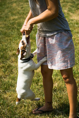 girl with jack russel terrier