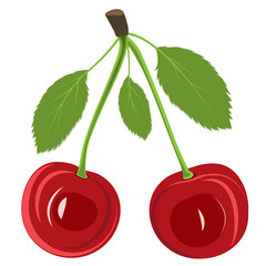 Illustration red cherry berries with leaves on white background