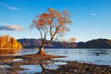 Fototapety Lake Wanaka, New Zealand