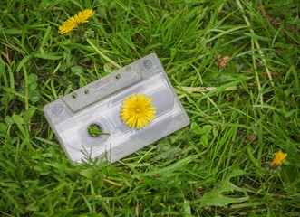 Old audio cassette in the grass