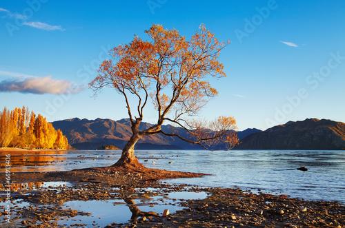 Fotobehang Nieuw Zeeland Lake Wanaka, New Zealand