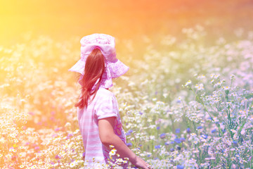 Little girl picking flowers in the meadow