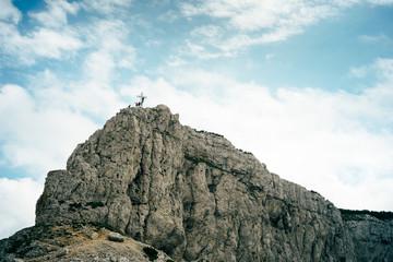 Monte Dos D'Abramo - Gruppo Bondone
