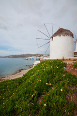 Windmills in Mykonos city