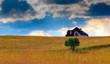 Obrazy na płótnie, fototapety, zdjęcia, fotoobrazy drukowane : Dom Pod Chmurami